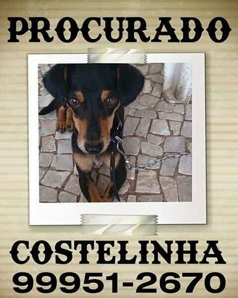 O cartaz de Costelinha / Foto: Arquivo pessoal