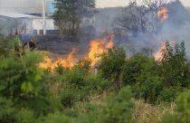 Fogo destrói 6 hectares de terreno e quase atinge sede de projeto em Campo Grande