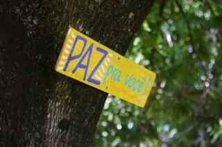 Grupo transforma praça inutilizada em Feira Ipê Amarelo no Coophatrabalho