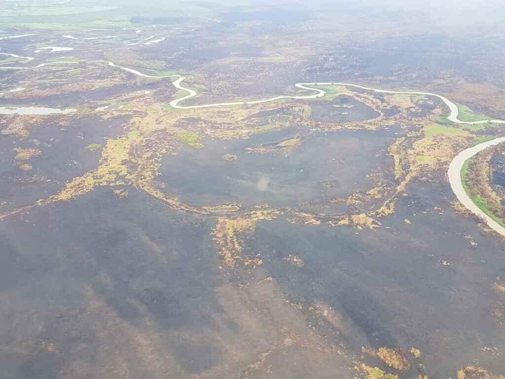 Com senadores e ministro do Meio Ambiente, comissão deve sobrevoar Pantanal em MS