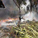 Fogo se alastra, atinge galpão, casa e mobiliza Corpo de Bombeiros na Capital