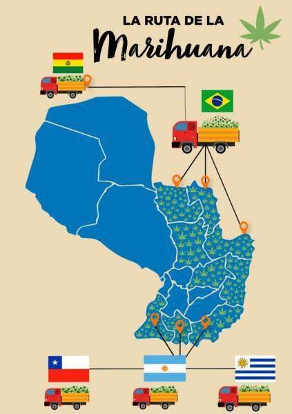 Levantamento reforça Mato Grosso do Sul como principal rota da maconha