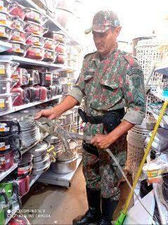 Iguana é capturada na prateleira de loja de utilidades em Coxim