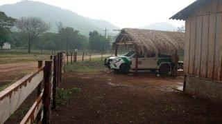 VÍDEO: chuva rápida dá um alívio nos combates aos incêndios no Pantanal
