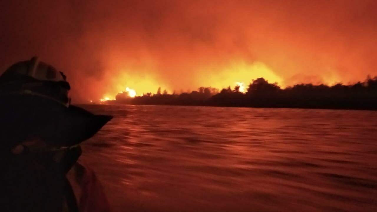 ONGs apontam lentidão do governo em lidar com incêndios no Pantanal