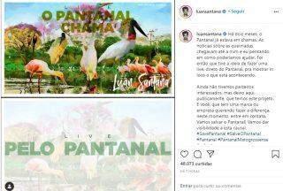 Luan Santana fará live direto do Pantanal para alertar sobre queimadas