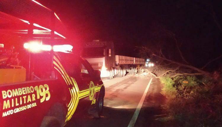 Casal morre em colisão frontal com carreta após motorista tentar desviar de árvore na pista